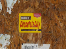 "Guest Lecture: ""Unmaking a Chocolate City: Spatial Aesthetics of Race and the Gentrifying Urban Landscape"" by Brandi T. Summers"